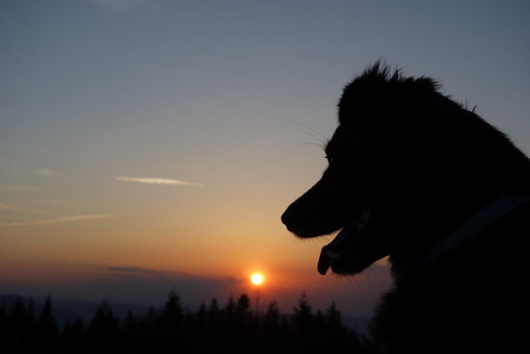 Piękny zachód słońca na Ćwilinie.