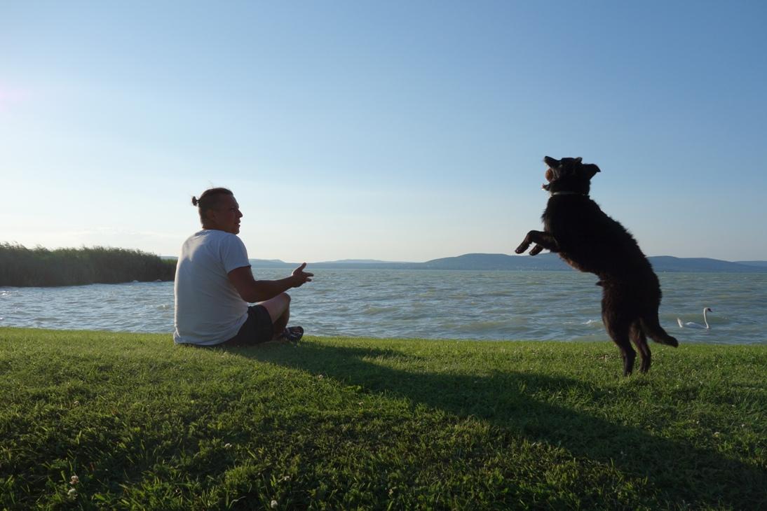Balaton z psem – praktyczny przewodnik.
